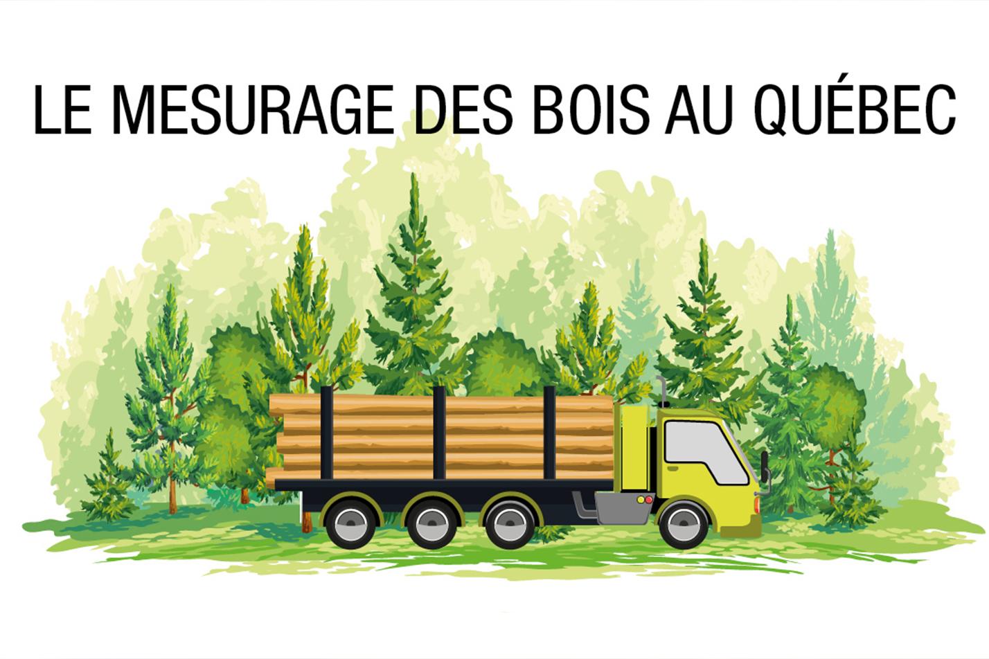 Camion chargé avec du bois rond en route vers le mesurage