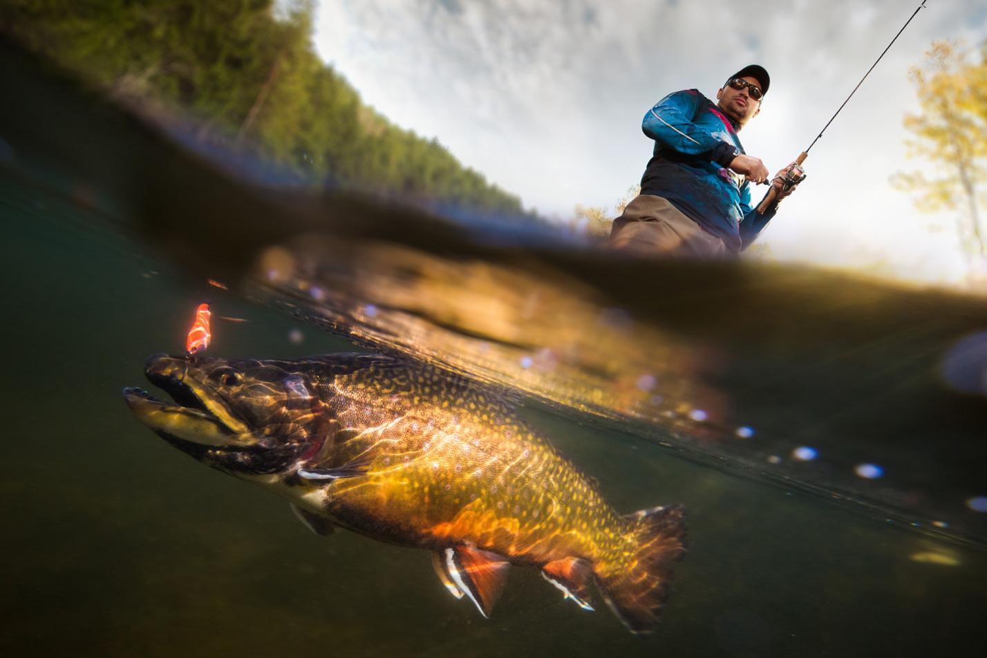 Pêcheur avec sa canne à pêche qui pêche un omble de fontaine anadrome.